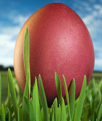 Easter eggs №8151