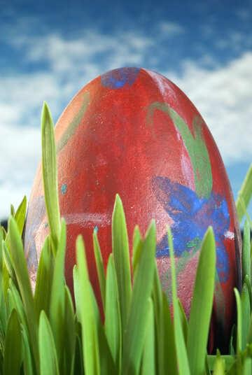 Easter eggs №8166