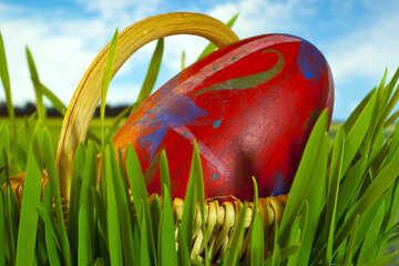 Easter  egg №8169