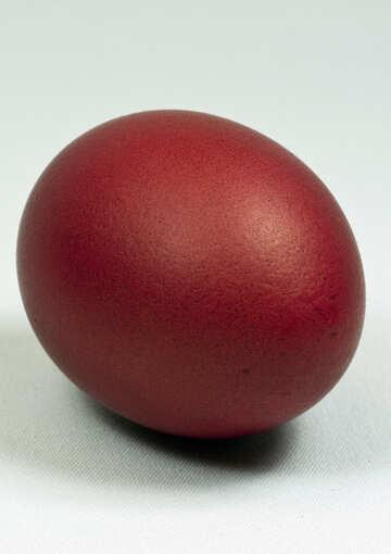 Red  egg №8144