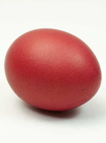 Egg  colored   Red  Color №8229