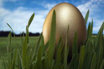 Festive  gold  egg №8103