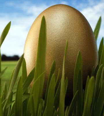 Large  gold  egg №8111