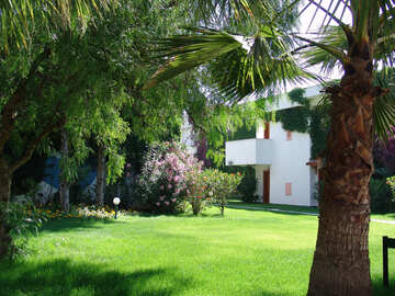 Lawn  near  home №8543