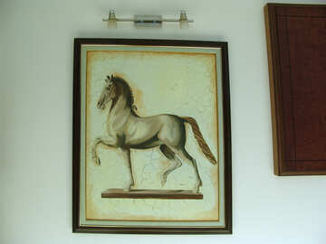 Painting . Horse . On  wall. №8314