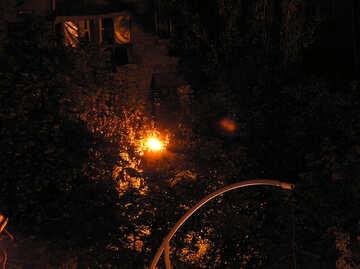 Lantern   park №8050