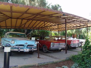 Exhibition  Retro  car №8256
