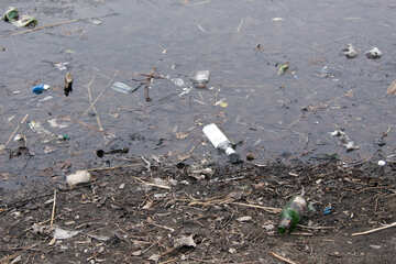 Bottles  and  garbage  in  water  and  at  coast №8712