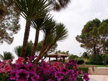 Blume Bett Palmen №8471