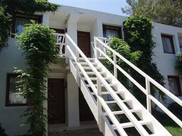 Ladder №8597