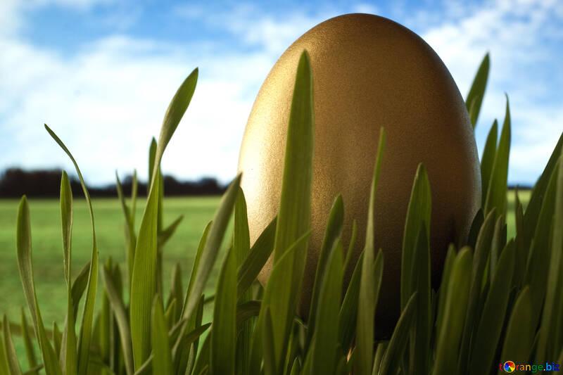 Hintergrund zu Glückwünsche Ostern. №8118