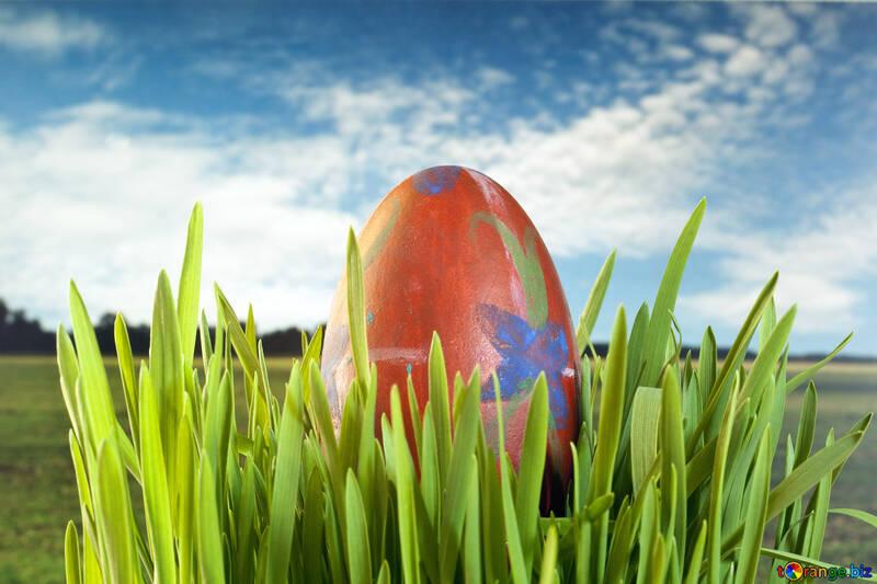 Easter  landscape. №8168