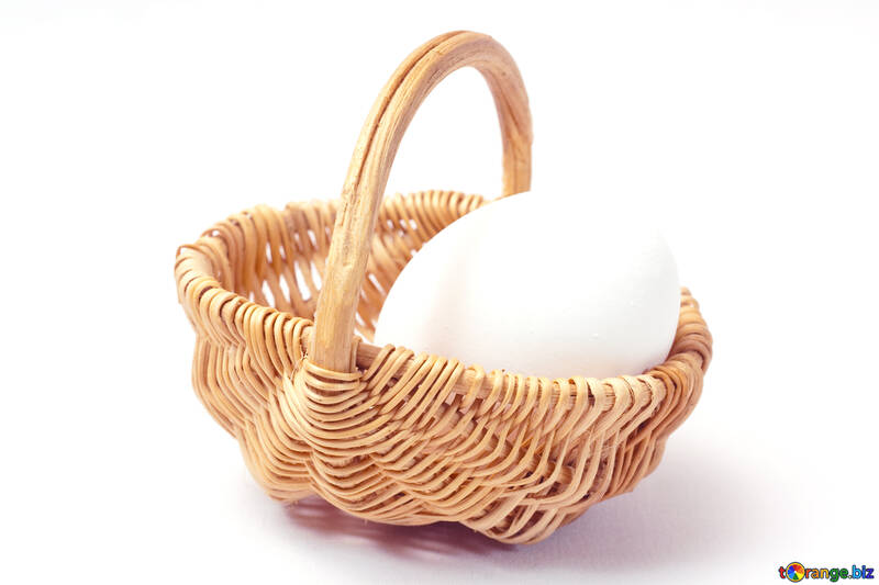 Home  chicken  egg №8209