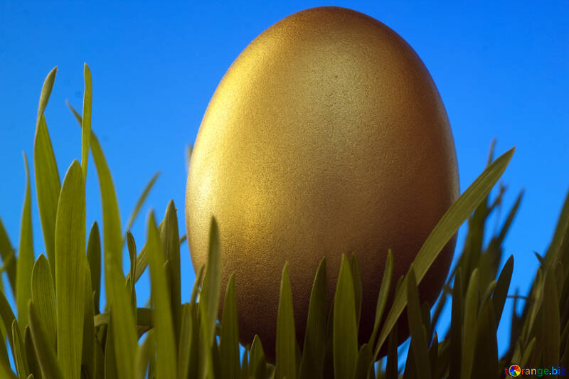 Background  to  postcards  at  Easter . Gold  Easter  Egg   grass  to  Blue  backdrop №8188
