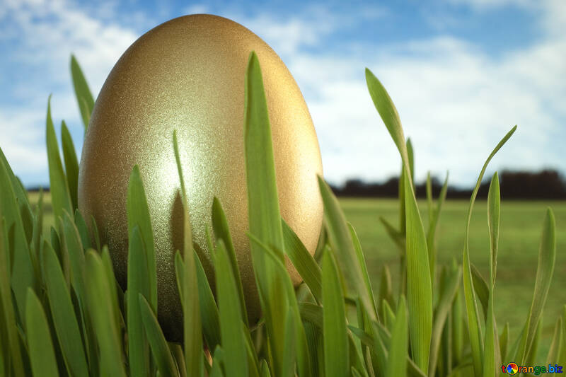Jewel  Easter  egg . Gold. №8187