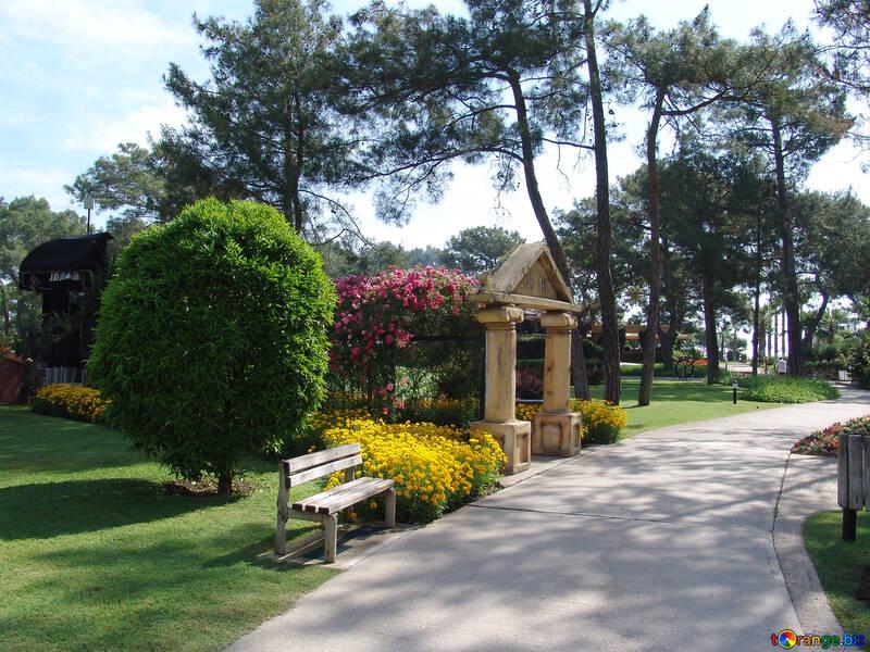 Camino parque. №8493