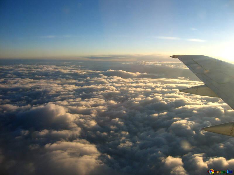 Sky . Type  top. №8023