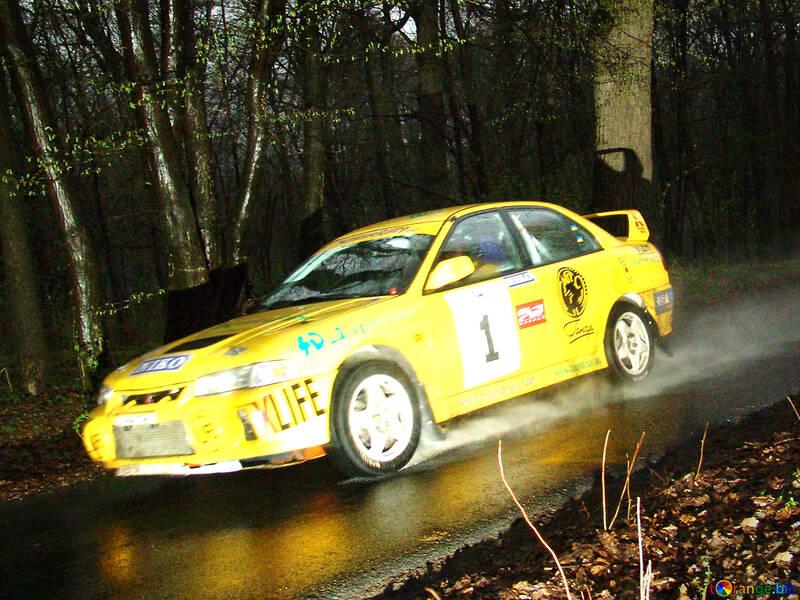 Night- Rally №8085