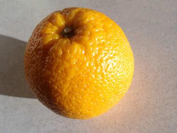 Orange №9213