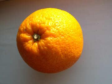 Апельсиновая корка №9209