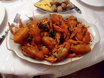 Crayfish for beer №9968