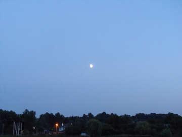Sera  luna №9646