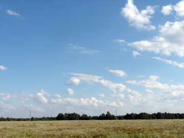 Country  landscape №9608