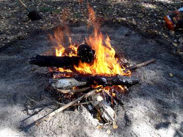 Bonfire №9536