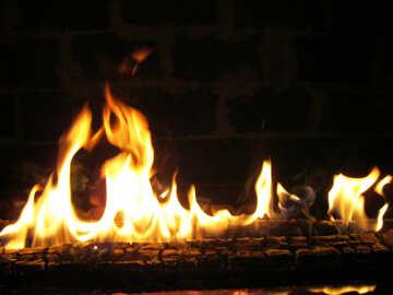 Fire flames №9373