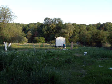 Garden №9621