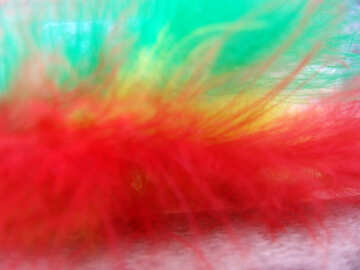 Color  feather.  Background. №9764