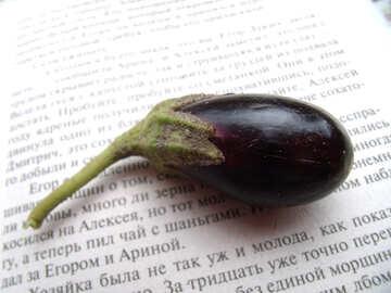 Miniature  eggplant №9220