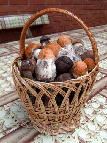 Cart  mushrooms №9444