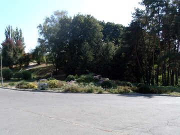 Empty  Park №9990
