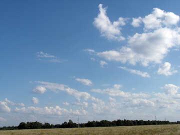 Sky  field №9607