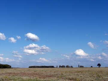 Cielo    campo №9604