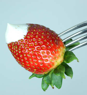 Strawberries  at  fork №9091