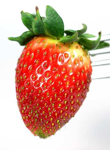 Strawberries  on  fork №9140