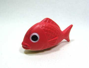 Pesci  giocattolo №9232