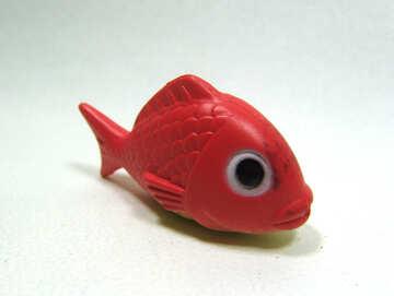 Rosso  pesci №9235
