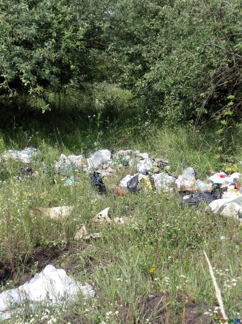 Décharge  ordures  à  Nature №9620
