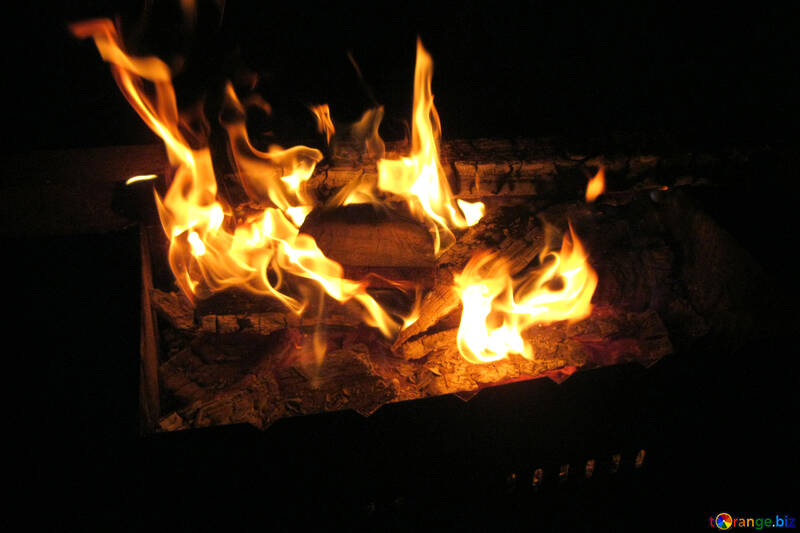 Fire  in  barbecue №9375