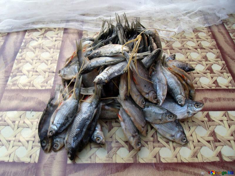 Getrocknet  Fische №9812