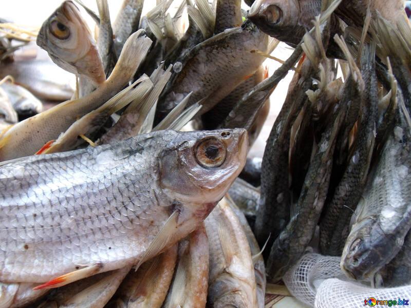Dried  fish №9814
