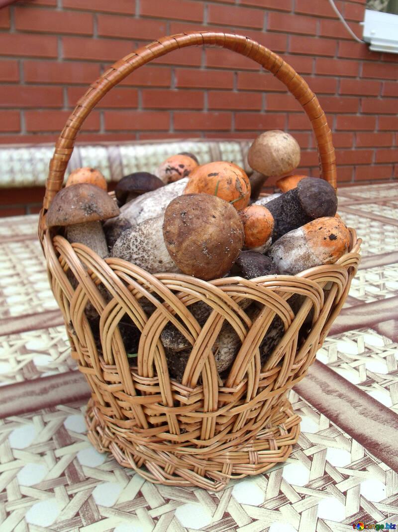 Вкусные грибы №9394