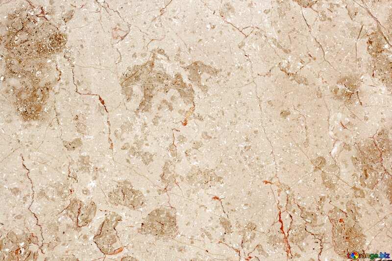 Beige color. Texture stone tile. №26994