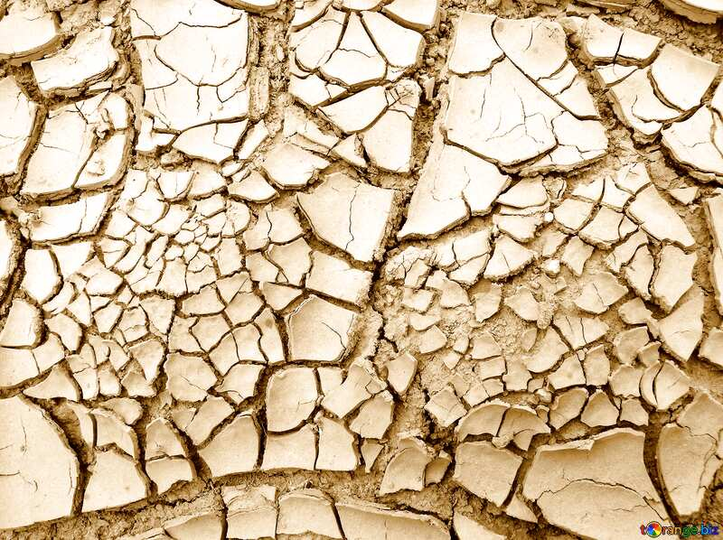 Yellow color. Cracked earth. Large. №627