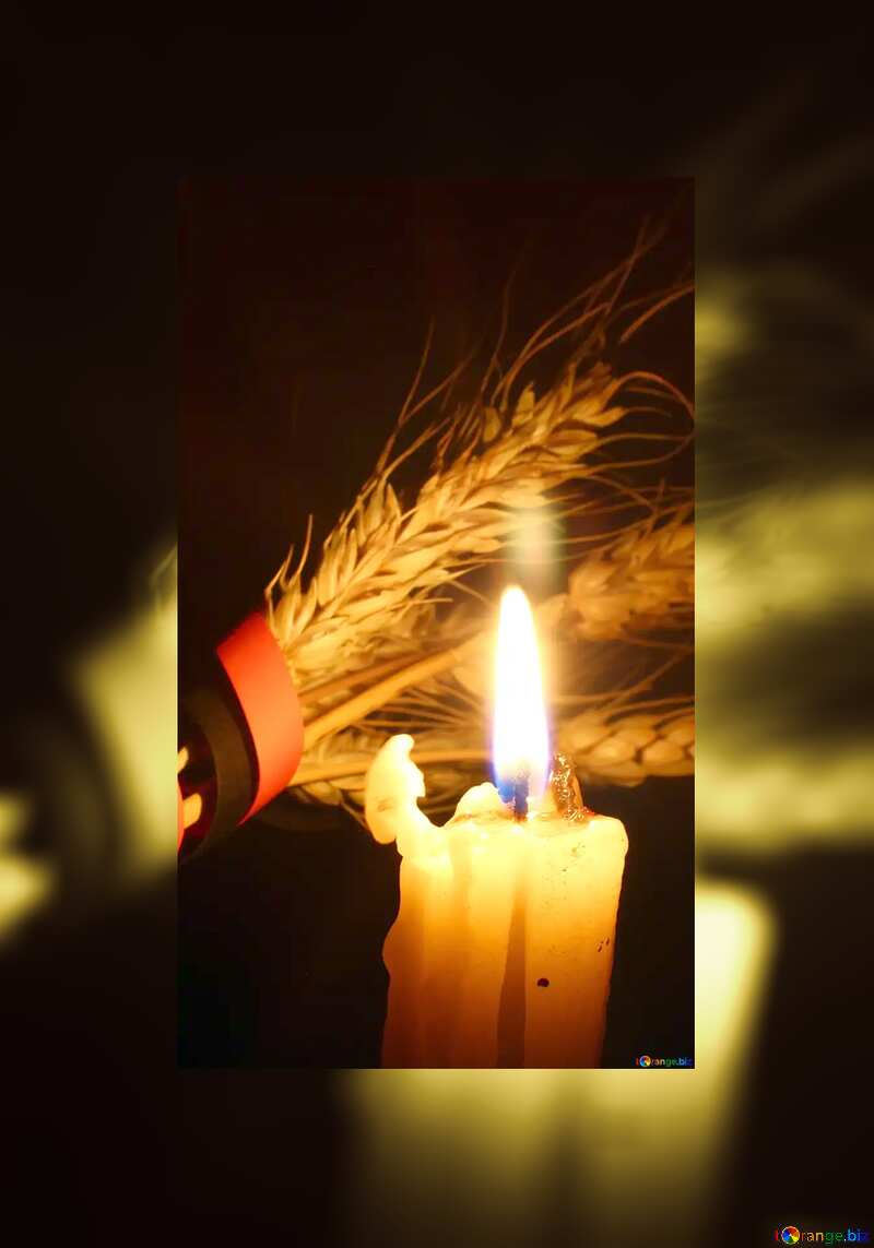 Memory of candle and wheat №37798