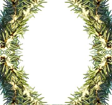 Vivid Colors. Fragment. Frame Pattern.
