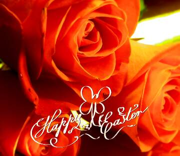 The effect of light. Blur frame. Fragment. Happy Easter card.